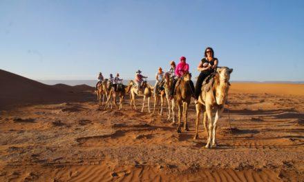 Vel gjennomført bloggtur til Marokko