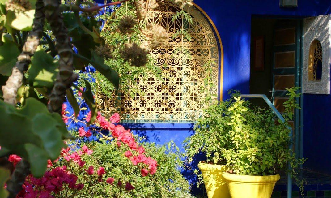 Reisetips Marokko: Majorelle Garden i Marrakech – en fargeopplevelse