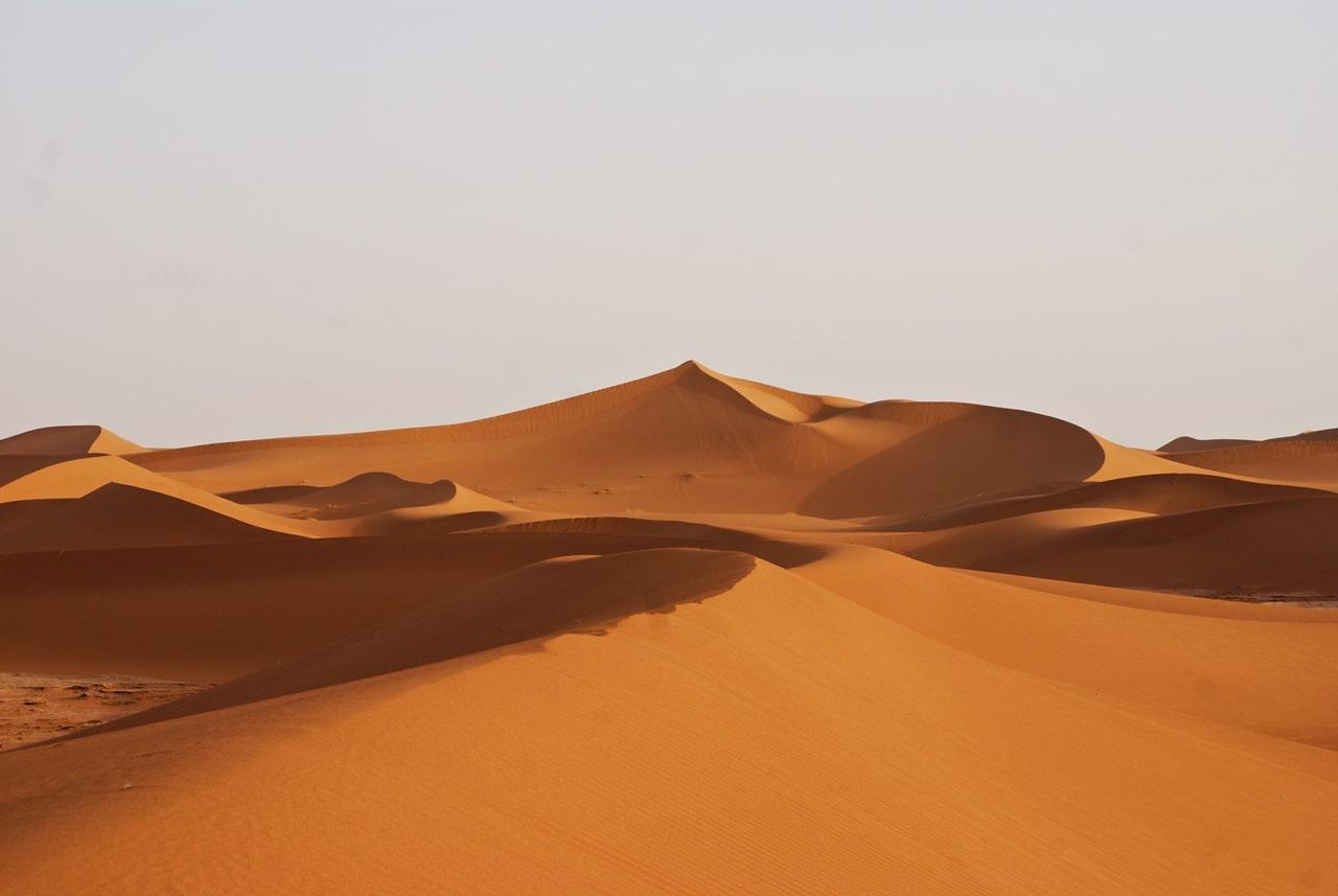 Sahara ørkenen Marokko