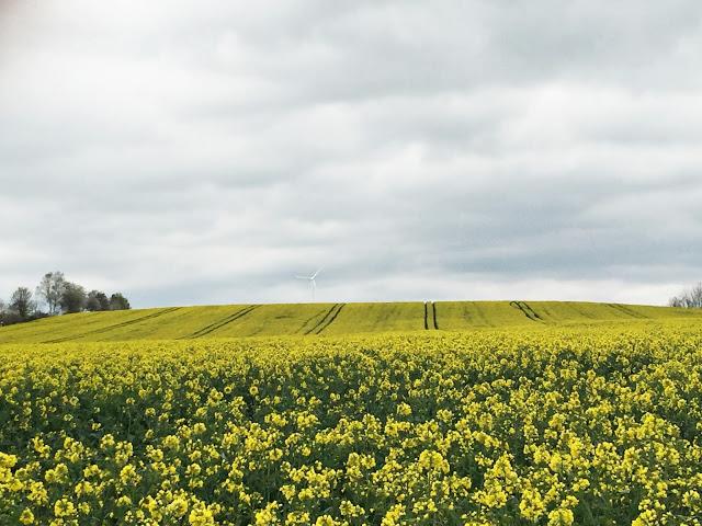 Oppdag Thüringen fra sykkelsetet