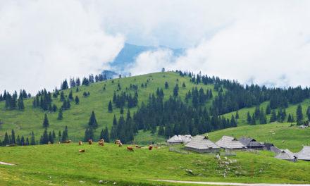 Velika Planina – et eventyrlandskap i Slovenia