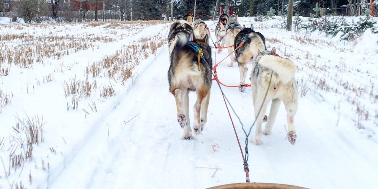 6 perfekte utendørs vinteraktiviteter i Lahti