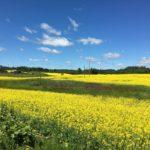 På kulturell roadtrip i Latgale øst i Latvia