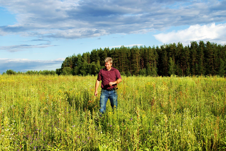 urtete i Latvia Rakuti