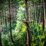 Adventure-paradiset Zillertal i Tirol