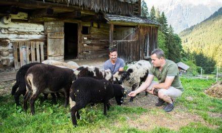 Kulturbærerne i de østerrikske alper