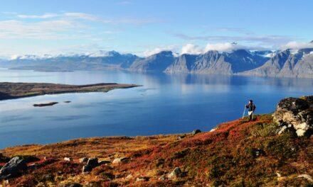 11 ting å gjøre i høst ved Lyngenfjorden