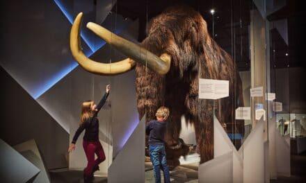 Norsk Fjellsenter – et av landets råeste museum!