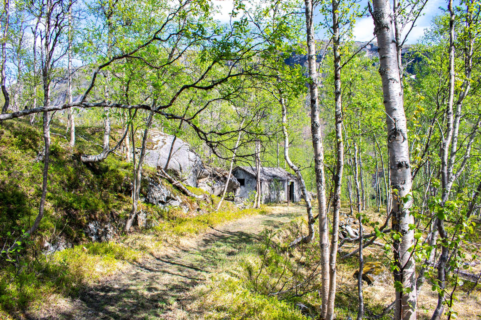 Rallarveien ved Narvik