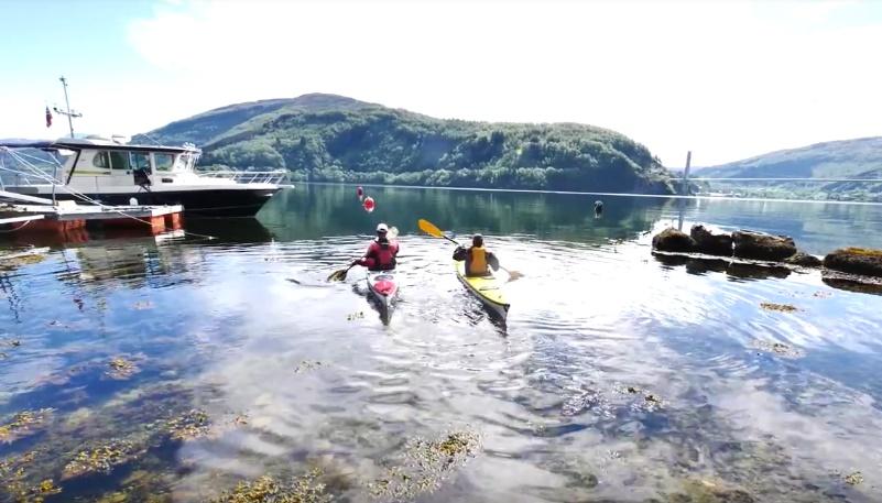 I ett med naturen – Kajakkpadling på Dalsfjorden